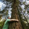 Lower blood pressure and other joys of the forest
